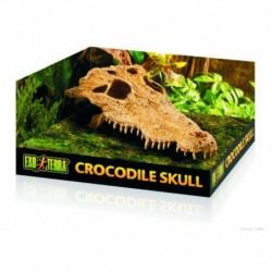 Exoterra cueva craneo cocodrilo