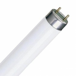 Tubo T8 blanco 14w 360mm 10000K