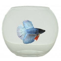 Pecera 12cm 750ml bettas