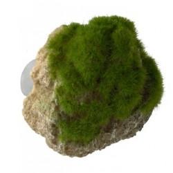 Roca moss stone ventosa s 12x9.5x10.5cm