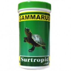 Gammarus surtropic  250ml 31g