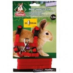 Petral+ramal conejo  1.2m